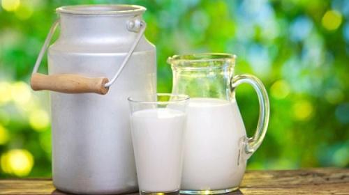 Minuman Susu Kalsium Untuk Penambah Tinggi badan Dengan Cepat
